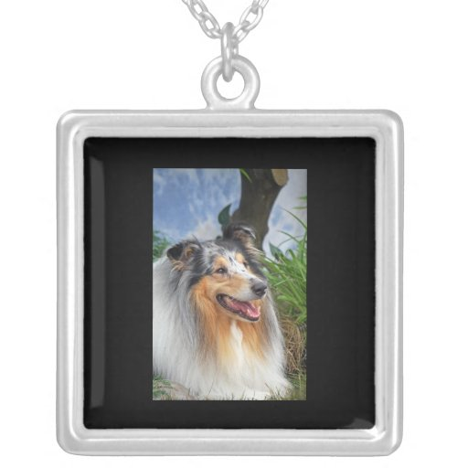 Beautiful Collie dog blue merle necklace, gift