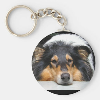 Beautiful Collie dog nose tri color keychain, gift Basic Round Button Keychain