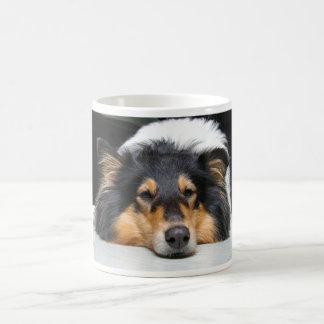 Beautiful Collie dog nose tri color mug, gift Coffee Mug