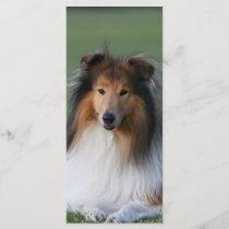 Beautiful Collie dog portrait bookmark,  gift idea