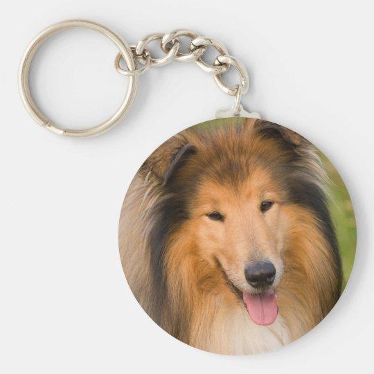 Beautiful Collie dog portrait keychain, gift idea Keychain