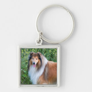 Beautiful Collie dog portrait keychain, gift idea Silver-Colored Square Keychain
