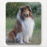 Beautiful Collie dog portrait mousepad, gift idea
