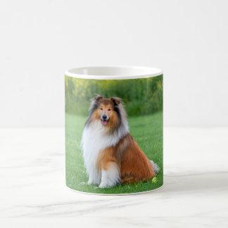 Beautiful Collie dog portrait mug, gift idea Classic White Coffee Mug