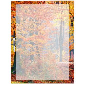 Beautiful colorful autumn fall forest sunbeams dry erase board