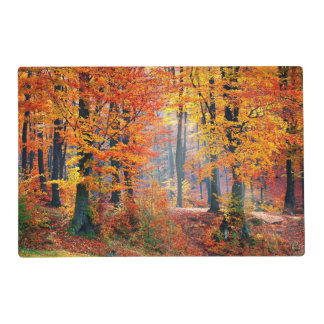 Beautiful colorful autumn forest sunbeams placemat