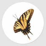 Beautiful  Colorful Butterfly Clothing and Gifts Round Stickers