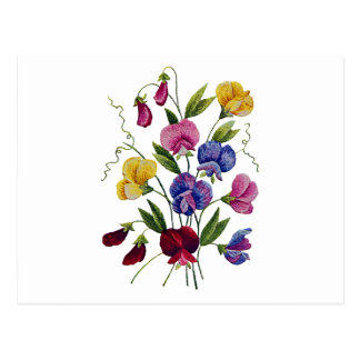 Beautiful, Colorful, Embroidered Sweet Peas Postcard