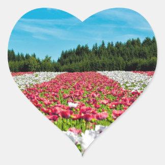 Beautiful colorful field of poppy flowers heart sticker