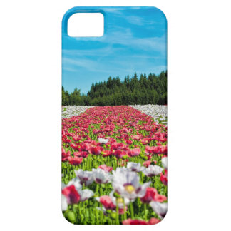 Beautiful colorful field of poppy flowers iPhone SE/5/5s case
