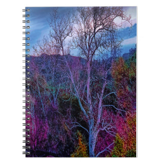 Beautiful, colorful landscape on a photo notebook