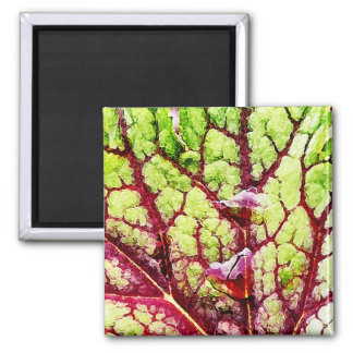 Beautiful Colorful Leaf with Raindrops 2 Inch Square Magnet