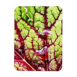 Beautiful Colorful Leaf with Raindrops Rectangular Photo Magnet