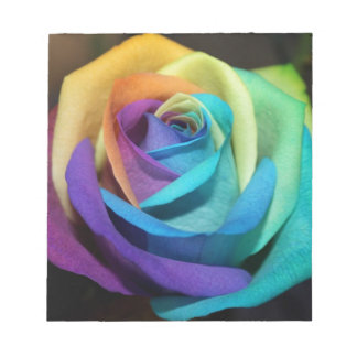 Beautiful colorful rose notepad