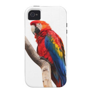 Beautiful Colorful Scarlet Macaw Parrot Bird Case For The iPhone 4