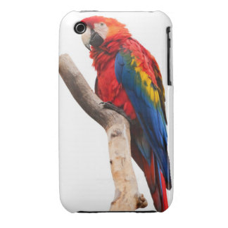 Beautiful Colorful Scarlet Macaw Parrot Bird iPhone 3 Cases