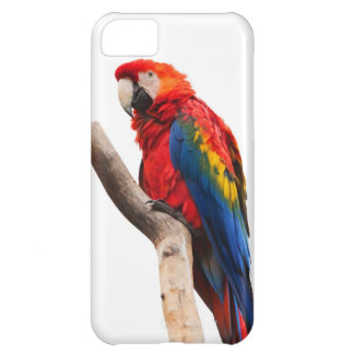 Beautiful Colorful Scarlet Macaw Parrot Bird iPhone 5C Cases