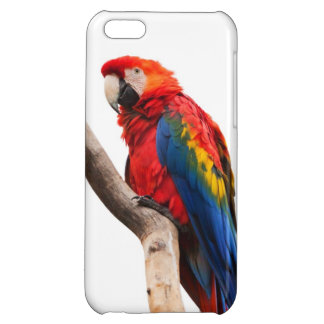 Beautiful Colorful Scarlet Macaw Parrot Bird iPhone 5C Case