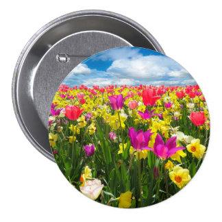 Beautiful Colorful Tulip Field Pinback Button