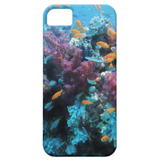 Beautiful colorful underwater world iPhone SE/5/5s case