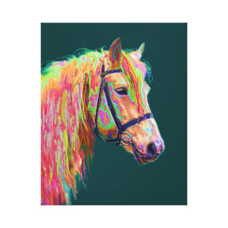 Beautiful colour of the Rainbow Highland Pony Canvas Print