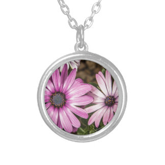 Beautiful colourful African Daisies Round Pendant Necklace