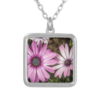 Beautiful colourful African Daisies Square Pendant Necklace