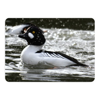 Beautiful Common Goldeneye Are Playing In The Rive 5x7 Paper Invitation Card