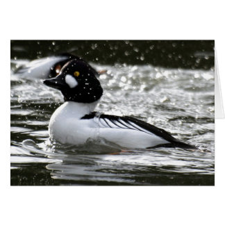 Beautiful Common Goldeneye Are Playing In The Rive Greeting Card