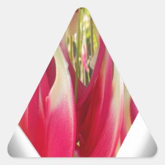 Beautiful cool Amazing Hakuna Matata Heart.png Triangle Sticker