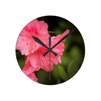 Beautiful Coral Azalea Round Wall Clock