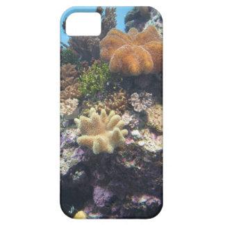 Beautiful coral i phone case