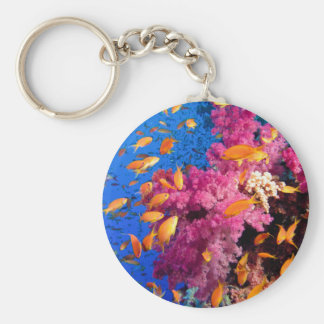 Beautiful Coral Reef Naturescape Key Chain