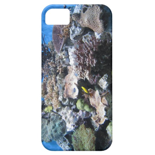 beautiful coral underwater i phone case