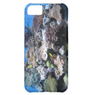 beautiful coral underwater i phone case