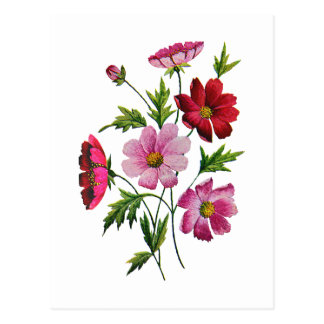 Beautiful Cosmos Flowers in Crewel Embroidery Postcard