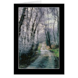 Beautiful Country Path - The Road Not Taken Greeting Card