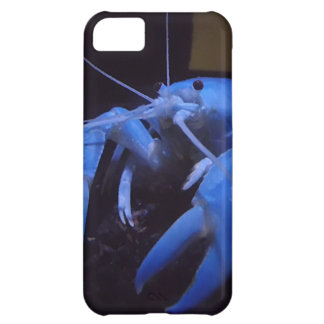 Beautiful Crayfish Case For iPhone 5C