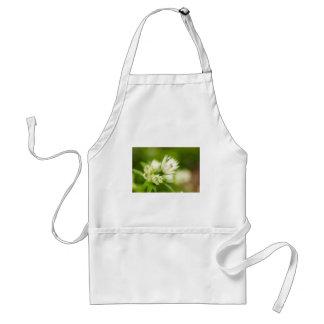 beautiful cream and green bog garden flower adult apron