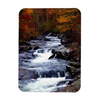 Beautiful creek nature scenery rectangular photo magnet