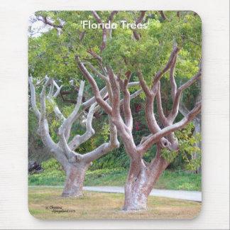 Beautiful curvy Florida trees Mousepad