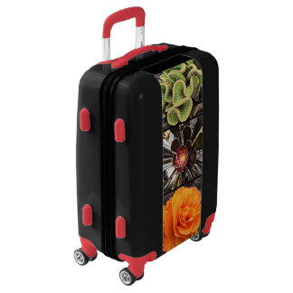 Beautiful, cute, chic cacti & roses close-up photo luggage