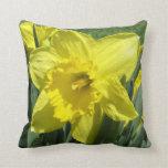 Beautiful daffodil pillow