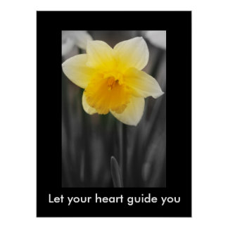 Beautiful daffodil, Value Poster Paper (Matte)