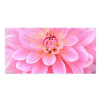 Beautiful Dahlia (closeup) Card