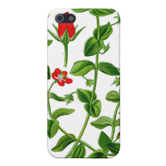Beautiful Dainty red spring flower Case For iPhone SE/5/5s