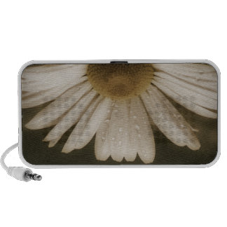 Beautiful Daisy Flower Travelling Speakers