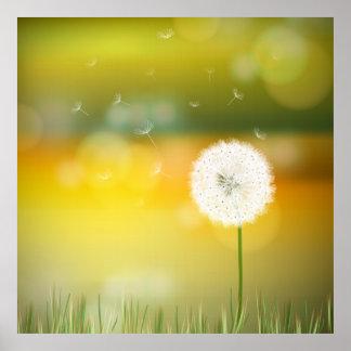 Beautiful dandelion spring illustration poster