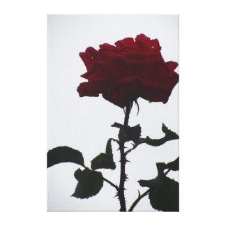 Beautiful Dark Red Flower Canvas Print