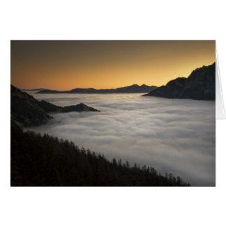 Beautiful Dawn Card